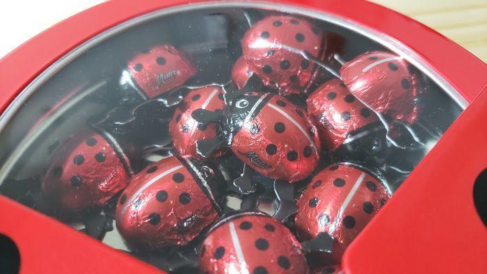 たくさんのてんとう虫チョコレート