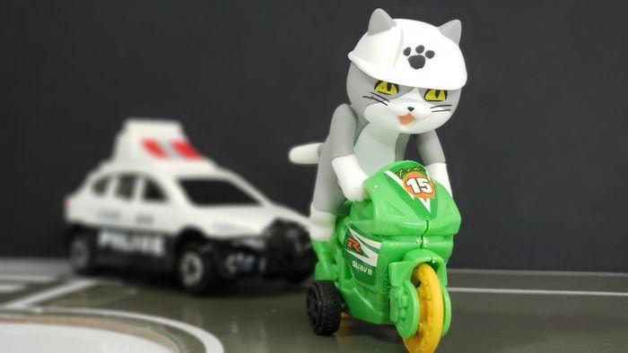 バイクに乗った仕事猫